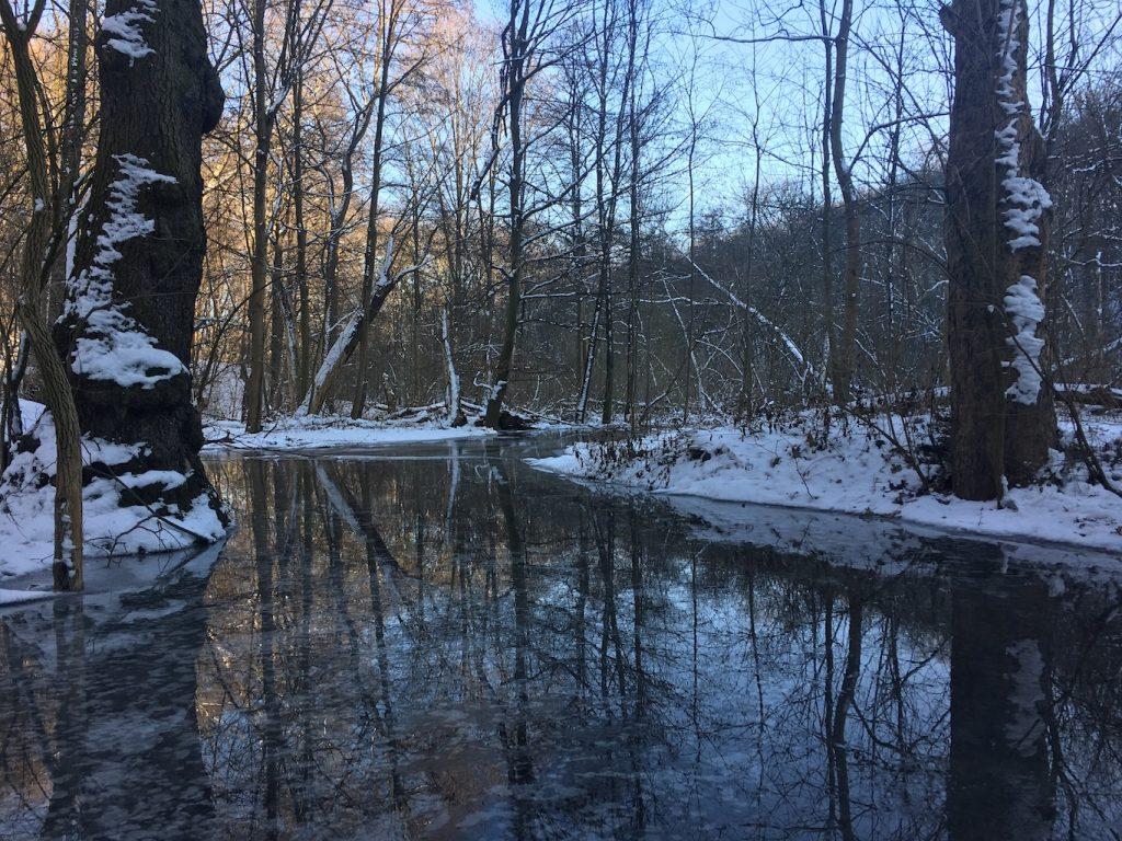 Reflektionen im Eiswasser
